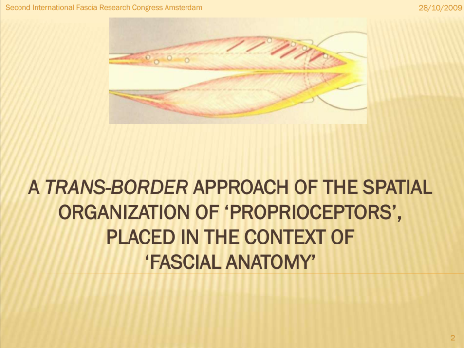493-PPt-The-Architecture-of-ConnectiveTissue-EN