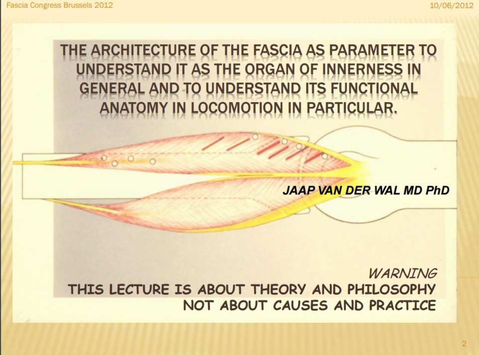 490-PPt-Fascia-organ-of-innerness-EN